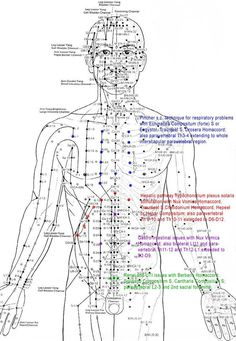 Acupuncture Points Chart 1000+ ideas about acupuncture points chart on pinterest ...