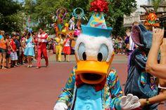 Donald Duck - Celebrate a Dream Come True Parade - Magic Kingdom