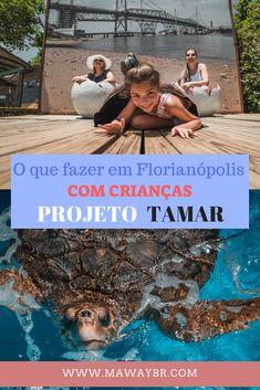 Florianópolis além das suas lindas praias! Visite o Projeto Tamar e passa uma tarde deliciosa com muita atividade para os pequenos! O que fazer em Florianópolis com crianças.