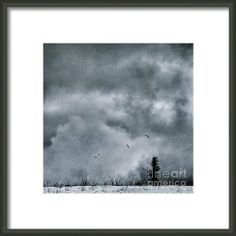 Land Shapes 5 Framed Print By Priska WettsteinWettsteinThis series is work in progress, I want to show the serenity, the unforgivness, the beauty of this landscape, where humans are only tolerated, not accepted.