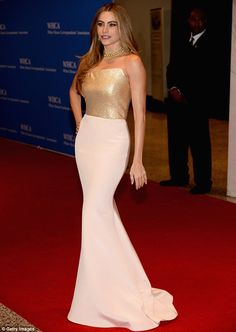 Golden girl! Sofia Vergara led the early arrivals at the White House Correspondents' dinner in DC on Saturday night