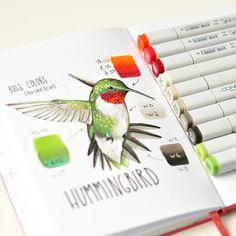 Hummingbird   by Anna Rastorgueva