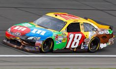 Time for NASCAR Sprint Cup drivers outside the top 10 to start thinking wild card Jacksonville Sharks, Kyle Bush, Kyle Busch Motorsports, Tony Stewart Racing, Nascar Cars, Kevin Harvick, Nascar Sprint Cup, Bad To The Bone, Paint Schemes