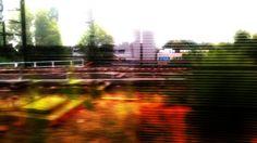 Urban 999   Frame 008 -