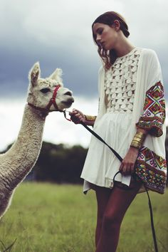 llamas and alpacas! also, this dress reminds me of the afghani one i got to wear at the Rejoice! cultural fashion show this past year. lovely!