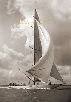 Shamrock V 1934 © Beken of Cowes I sailed on her 2001 for the jclass regatta in the Solent and America's cup jubilee:) Classic Sailing, Classic Yachts, Beach House Style, J Class Yacht, Sail Racing, Sailboat Living, Us Sailing, Yacht Boat, Yacht Design