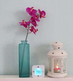 Wake, flower, candle holder