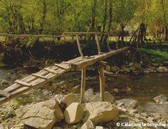 Cheile Râmeţului - potecă Garden Bridge, Firewood, Outdoor Structures, Wood Fuel