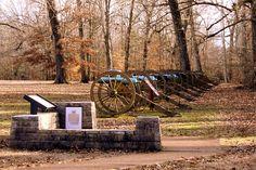 Shiloh Battlefield: Line of Cannons in a Field by SeeMidTN.com (aka Brent), via Flickr