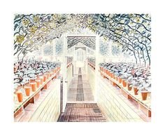 The Greenhouse Tomatoes & Cyclamens Watercolor Painting by Eric Ravilious _ Visiting England this week, I have been entranced by Eric Ravilious' work, seen mostly for the first time. Greenhouse Tomatoes, Sussex Downs, Dulwich Picture Gallery, Handwritten Text, English Artists, British Artists, Garden Art, Garden Painting, Garden Sheds