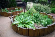 raised beds / Coast & country landscape design