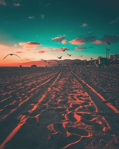 Santa Monica California by J Camacho by CaliforniaFeelings.com california cali LA CA SF SanDiego