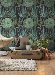 Kakteen Tapete Succulentus Von MIND THE GAP 3452. Moderne  WandgestaltungRaumgestaltungKonzeptWandbilderWohnzimmerEinrichtungWohnen WandfarbenBlumeTapete ...