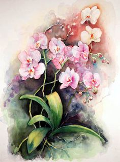 pink and white orchids #watercolor