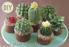 """Designer and baker Alana Jones-Mann has created adorable cupcakes topped with cactus- and succulent-shaped frosting. The cupcakes include """"sand"""" made of finely processed Teddy Grahams. She has post. Cupcakes Succulents, Kaktus Cupcakes, Garden Cupcakes, Edible Succulents, Cupcakes Bonitos, Cupcakes Decorados, Beautiful Cakes, Amazing Cakes, Cactus Cake"""