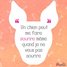 Un chien peut me faire sourire même quand je ne veux pas sourire ------- A dog can make me smile even when I don't want to smile