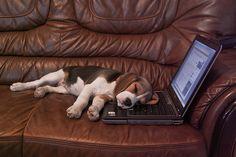 i net unaví :-)