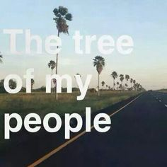 .... Harlingen Texas, My People, Vacation, Mom, Vacations, Holidays Music, Mothers, Holidays