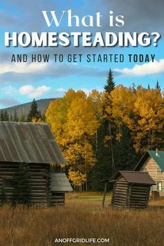 If you're looking for an answer to what is homeseading, learn the history here and get tips to start your own. #homesteading #homestead #homesteadingforbeginners Federal Government Grant, What Is Homestead, City Farm, Urban Homesteading, Small Farm, Grow Your Own Food, Raising Chickens, Natural Home Remedies, Good Times