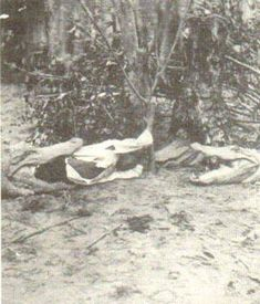 """Hope for Africa """"Did you know in Florida during slavery slave masters would take a enslaved black child tie a rope around his or her legs put them in the water and use them for... ALLIGATOR BAIT. Two movies in 1900 """"Alligator Bait"""" and """"Gator and the Pickaninny."""" both showed and proved this practice.There were many advertisements and postcards in the South that proved this was real."""""""