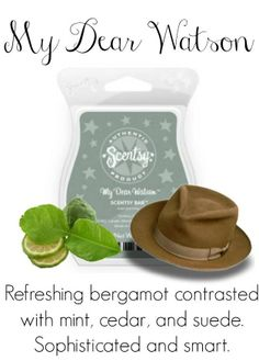 """My Dear Watson"" Scentsy Bar Contact me for new products, sales, and even FREE samples!   www://Blissfragrance.scentsy.us/"