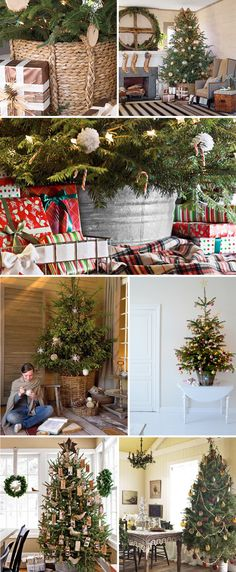 Christmas trees in baskets...I love this so much better than our ugly base and tree skirt!