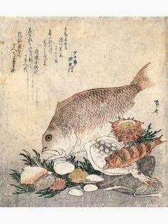 """Ryuryukyo Shinsai - Fish and shells"" Art Print by Hangastudio Fish Tales, Thing 1, Shell Art, Large Prints, Vintage World Maps, Shells, Art Print, Gallery, Artist"