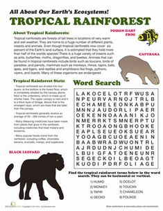Learn about world ecosystems with a fun and informative worksheet! This one is all about the tropical rainforest.