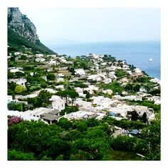 #italy #Capri #summer2016 #photography #summer #2016 #holidays #nature