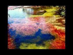 Caño Cristales Fotos - Turismo - YouTube