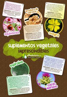 5 suplementos vegetales imprescindibles en tu botiquín. >> [ + info ] ELHERBOLARIO.COM http://www.elherbolario.com/noticia/1213/PLANTAS-MEDICINALES/5-Suplementos-imprescindibles.html