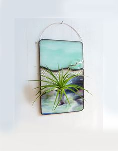 Stained Glass Panel Air Plant Holder - Mint Up. $28.99, via Etsy.