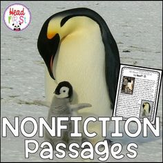 Kids love learning about animals. This non-fiction reading passage on PENGUINS includes vocabulary work, comprehension, notetaking, and expository or informational writing! Use during guided reading or whole class instruction. This could be used for first, second, or third grade. Perfect for a BIRDS...