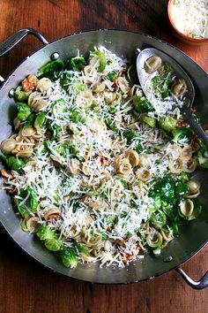 Orecchiette with Brussels Sprouts, Walnuts & Butter. Perfect spring pasta