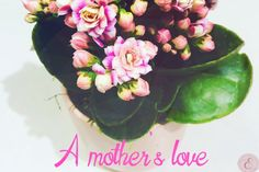 A Mother's love Twin Mom, Proverbs 31, Mothers Love, Our Girl, Call Her, Love Her, Blessed, Challenges, God
