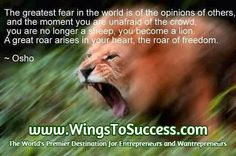 The greatest fear in the world is the opinion of others - http://www.wingstosuccess.com/