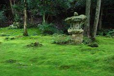 ~ Ohara, Japan : Sanzen-in, Tendai Buddhism monzeki temple  -   Ishidoro, or stone lantern, in the moss covered garden in front of Ojogokuraku-in