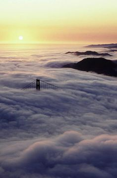 The Golden Gate in a sea of fog