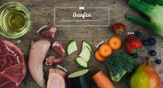 Herrchen_kocht_Barfen