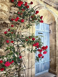 Red roses and blue door in Provence (Photo: Mark Wainer)