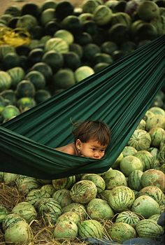 cambodian boy in a wonderland of watermelons