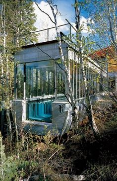 Amid The Trees in Park City, A Modern Mountain House.  Architecture by Peter Bohlin of Bohlin Cywinksi Jackson.  Photography by Nic Lehoux.    And yes, there is one swimming lane just for me, to make my daily laps ;-)