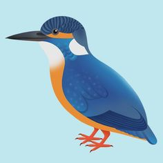 """Gemma Ellen on Twitter: """"It's #colour_collective @Clr_Collective time again, a #Kingfisher with some #BamiyanBlue in him #Bird #Illustration… """" Bird Illustration, Kingfisher, Location History, Whale, Colour, Twitter, Animals, Color, Animales"""