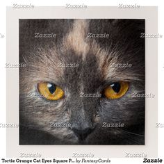 Tortie Orange Cat Eyes Square Puzzle Make Your Own Puzzle, Custom Gift Boxes, Cat Eyes, Big Picture, Diy Face Mask, High Quality Images, Gifts For Dad, Your Design, Jigsaw Puzzles