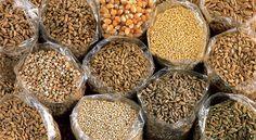 Come cucinare farro, quinoa e altri cereali: tempi di cottura e ammollo