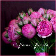 Bouquet rosas piano