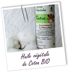 Fiche technique huile végétale de Coton BIO - Gossypium herbaceum