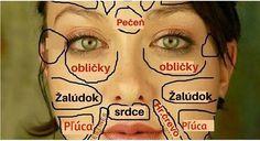 Lidská kůže se skládá ze tří částí: podkoží (subcutanea), škáry (corium) a z pokožky (epidermis). Právě pokožka, která je vrchní částí kůže, je vystavována všem vnějším vlivům. Vnímáme ní chlad, teplo, tlak, tah a různé jiné věci. Na pokožce se nám obejvilo různé vyrážky, ekzémy, vrásky, zarudnutí. Kůže nám umí dát sama najevo, že se …