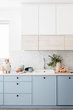 Kitchenette, Modern Kitchen Design, Kitchen Living, Living Room, Blue Walls, Dining Room Design, Kitchen Interior, Kitchen Cabinets, Interior Design