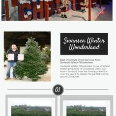 Swansea Winter Wonderland is one of the largest producers of Christmas trees located in Swansea, for many over years. Our main motive is always to sat